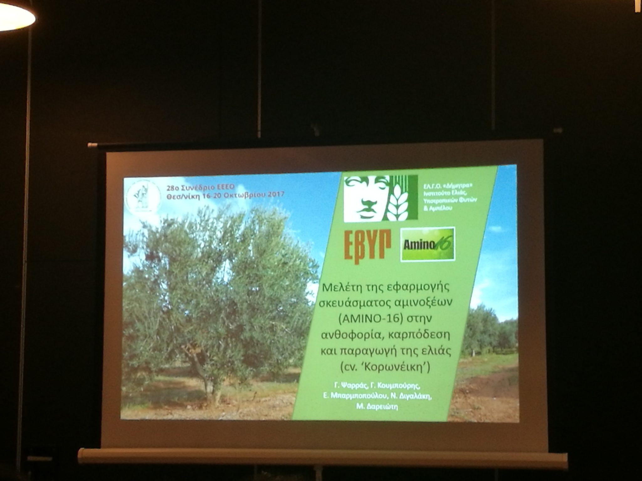 "The ""Amino 16"" of the EVYP in two studies at the 28th Conference of the Hellenic Society of Fruit and Vegetable Science"